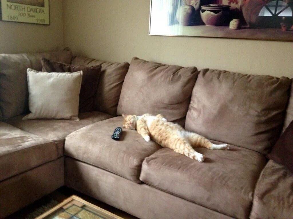 Открытки с диваном, поздравление новым годом