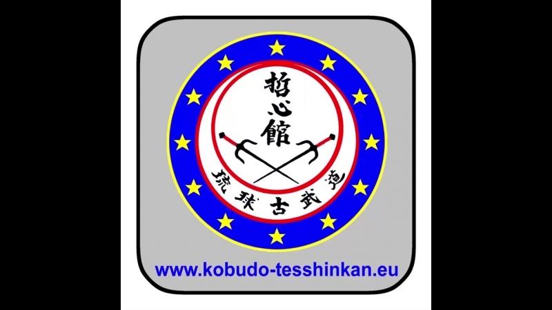 Bô-no-Kihon no. 3- Shômen-Uchi Chûdan-Tsuki