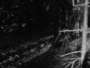 Rape NL Short Film 1966