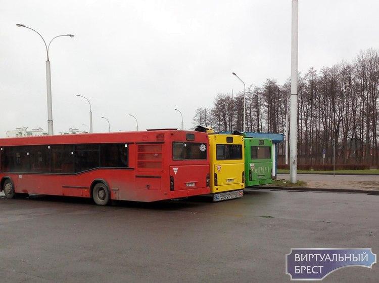 """""""Светофор"""" из автобусов можно увидеть в Бресте"""