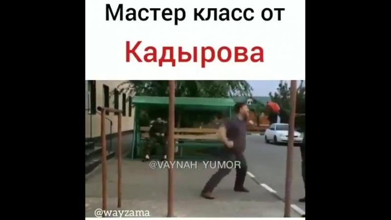 Ramzan Kadyrov, aussi fort quen UFC ! JE VEUX LE MÊME PRESIDENT ET PAS LE PD MACRON
