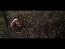 Tarzan.i.velikaya.reka.1967