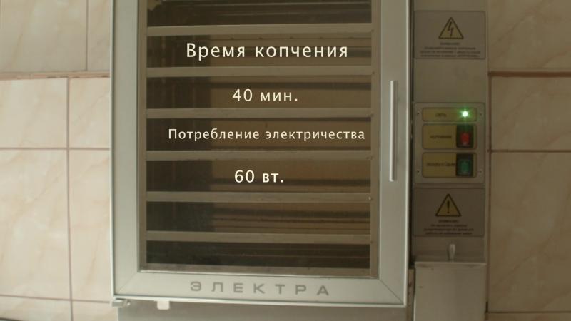 Электростатическая коптильня холодного копчения Электра