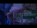 Spahn bezeichnet Hartz IV als ausreichend- Niemand muss in Deutschland hungern