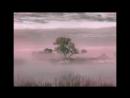 Туман обман Антиреспект