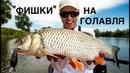 Полезные советы в голавлиной рыбалке и новые рабочие воблеры