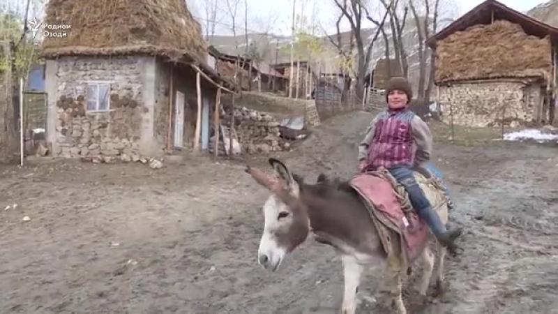 Шумораи воқеии мардуми камбизоати Тоҷикистон чӣ қадар аст?