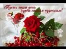 Doc281595421_471315384.mp4