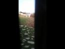 Novruz bayrami 2018 usaqlar papaq atir