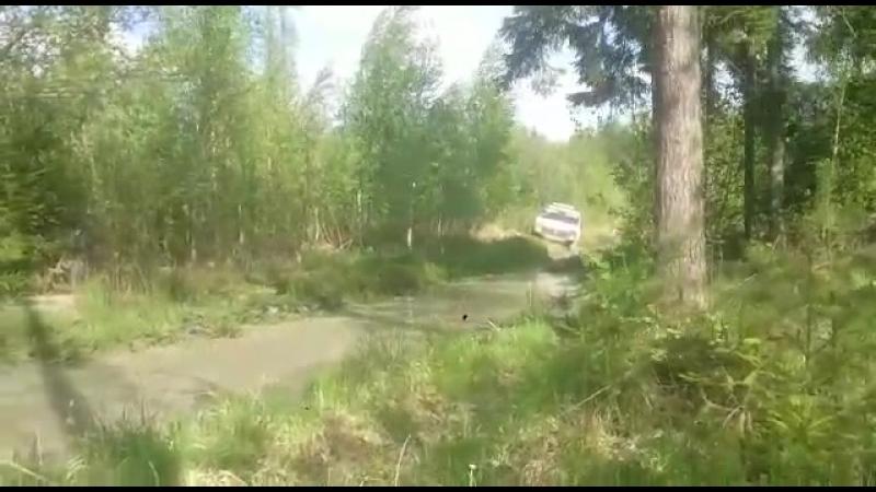 Засадная лужица