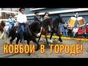 Парад лошадей в КОСТА РИКЕ Конное шествие КОСТА РИКА