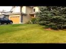 Лето в городе Калгари. Это СКАЗКА. Провинция Альберта. Канада