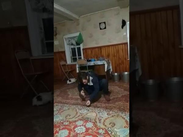 Как поймать тигра голыми руками. Казакша прикол с Ватсап (whatsapp) 2018.
