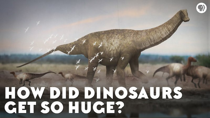 How Did Dinosaurs Get So Huge?