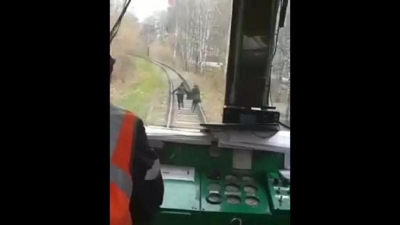 Би-бип..Поезд не едет, а давит