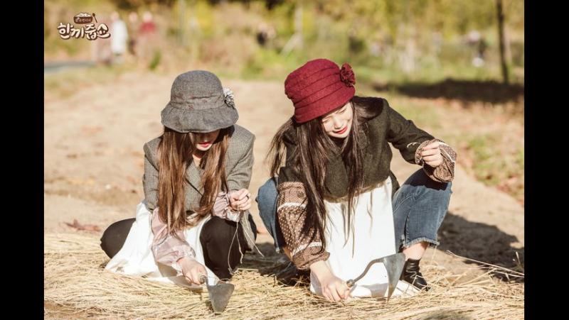 171122 Irene, Joy (Red Velvet) @ Let's Eat Dinner Together
