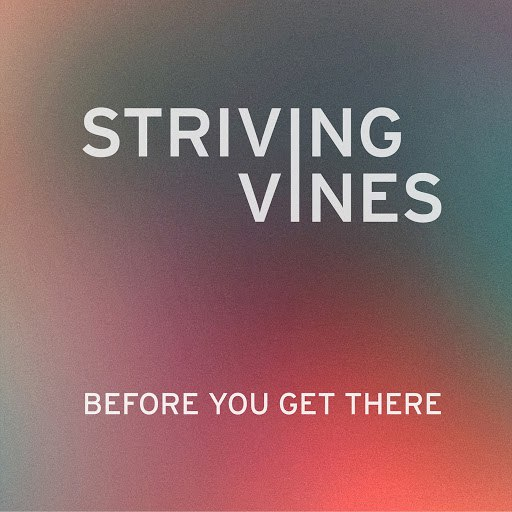 Striving Vines альбом Before You Get There