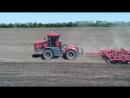 Трактор К-424 культивация и Трактора МТЗ-82 посев подсолнечника. Посевная