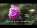 Дождевая капелька Закажи поздравление sok/profile.fvideonazakaz svk/irinavideonazakaz