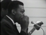 Hound Dog Taylor  Little Walter - Wild About you baby