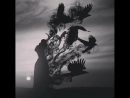 TEZ - Карнавал Эмоций. кайф kaif melody birds moon sky landscape луна пейзаж качает