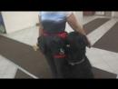 Русский черный терьер Ра. Занятие по дрессировке (ОКД): команда Апорт. Тольятти, 31 октября 2017.