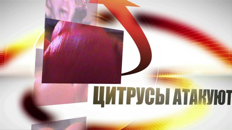 Вторжение апельсиновых корок убийц смотреть онлайн без регистрации