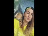 Rap &amp Rabbit Lady Waks в Сочи