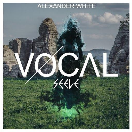 Vocal альбом Seele