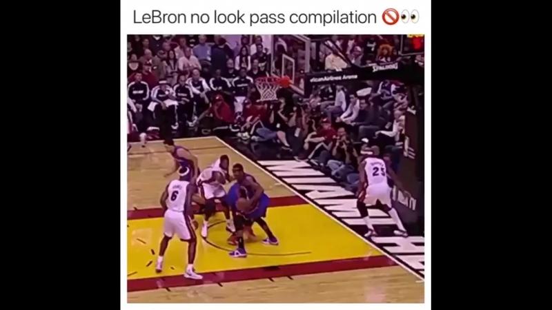 Basketball Vine 612