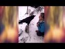 Говорящий ворон Вася кушать кушать хочет