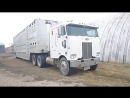 Cabover Peterbilt 352 two stroke detroit cold start