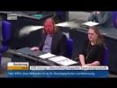 Guck mal der Grüne hier  Bundestag... - Demokratisches Europa der Vielfalt Werte
