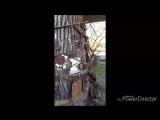 Проект_04-08(4)_Full HD.mp4