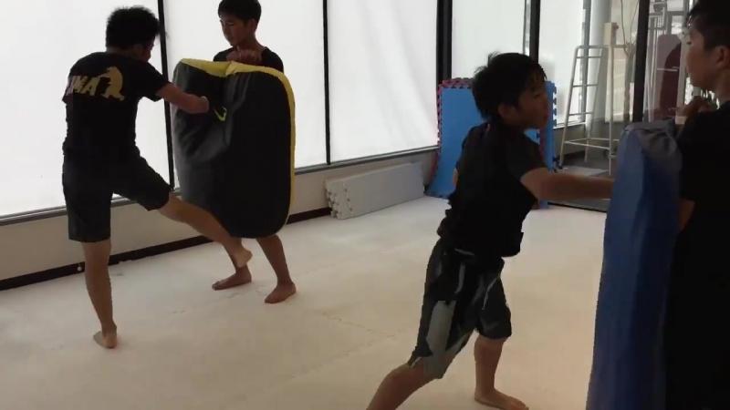 Подготовка бойцов из Японии полным ходом. Работа на Щитах в Японском додзё - tengu.pro/ - ПОДГОТОВКА БОЙЦА
