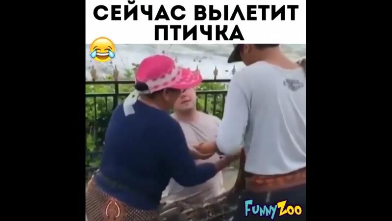 Вылетит птичка ))