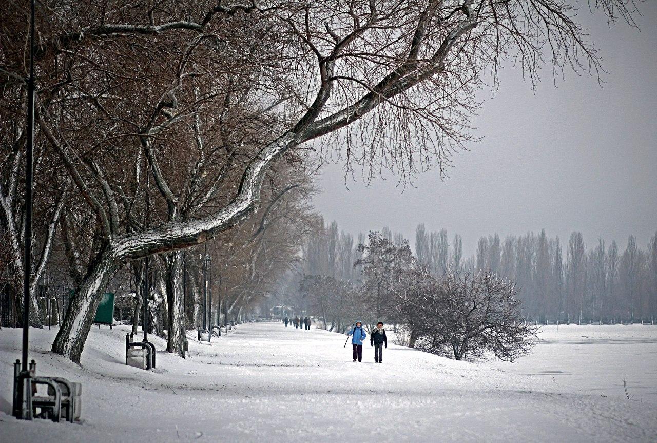 ГУ МЧС по Ростовской области: Ожидаются сильные морозы, снегопад и метель