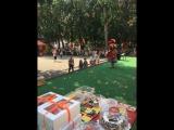 День шоколада в парке