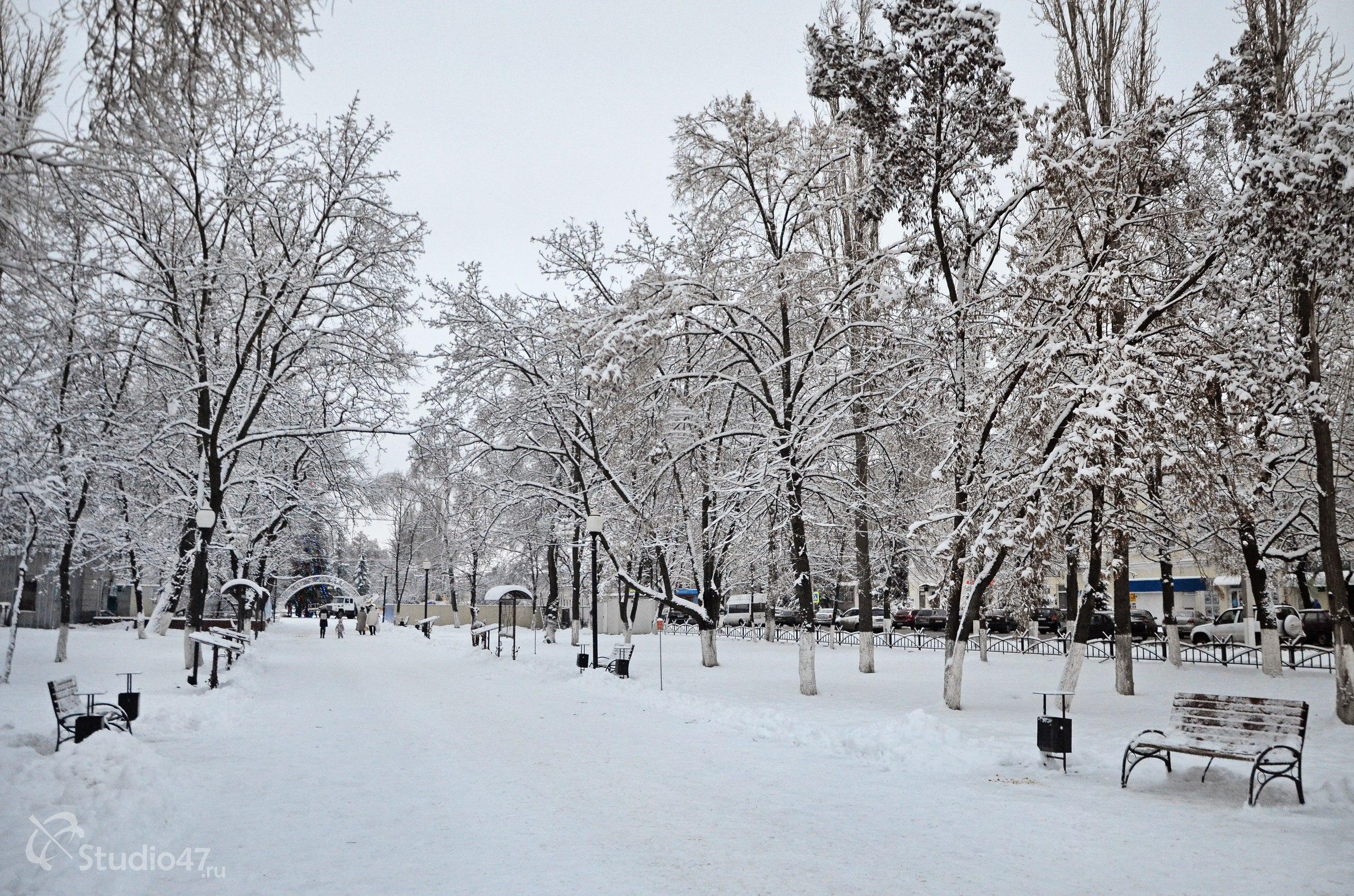 Центральный сквер в Борисоглебске