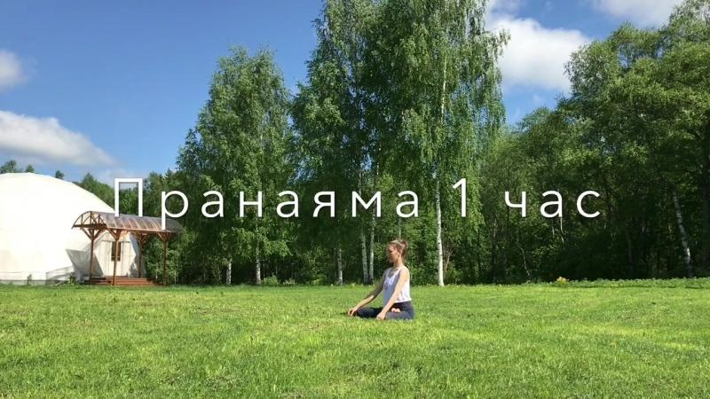 Пранаяма-концентрация на вдохах и выдохах