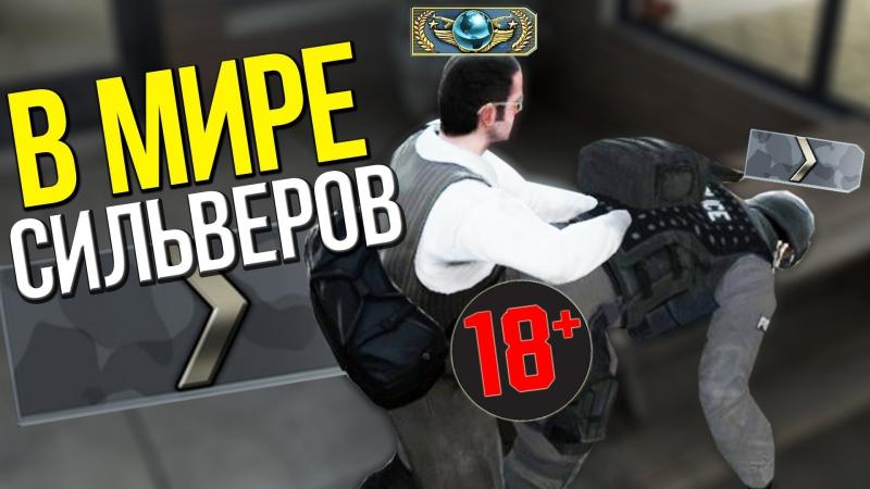 [Dmitriy Landstop] В МИРЕ СИЛЬВЕРОВ 10   CS:GO