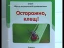 Колпашевские медики предлагают жителям поставить прививку от клещевого энцефалита