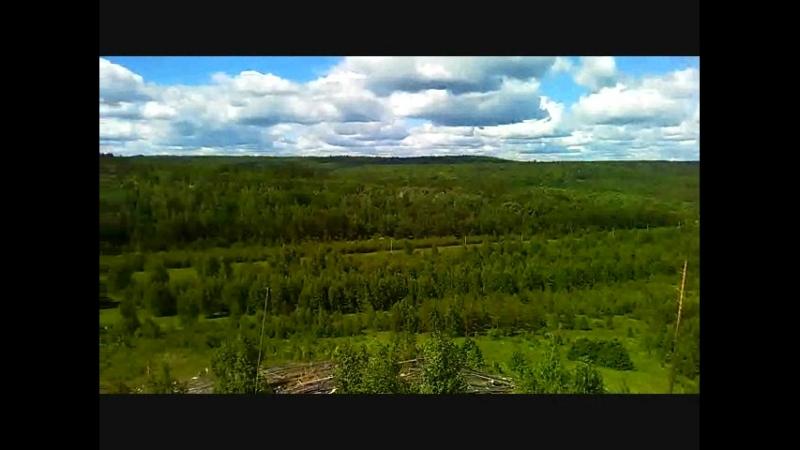 Скрипинские кучуры в близи деревни Черемоховка