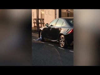 Чайка напала на Лексус