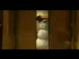 пингвины из мадагаскара на гоблинском=)хДД