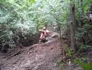 Кабанья тропа - упражнения на бревне