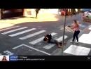 Bewaffneter versucht eine Gruppe von Frauen mit ihren Kindern zu berauben und bekommt passende Antwort einer US Bürgerin