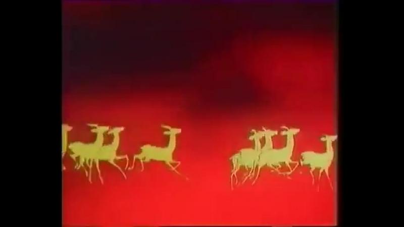 Музыка из передачи программы В мире животных