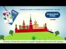 Правовая справка. Паспорт болельщика на Чемпионат мира по футболу - 2018. Часть 2