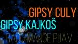 Gipsy Culy &amp Gipsy Kajko